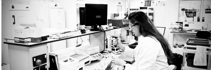 scientist working in somerset scientific services laboratory
